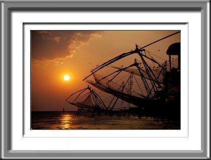 India,Chinese fishing nets,birds