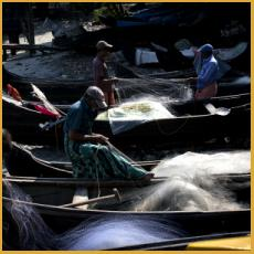 India, fishing nets